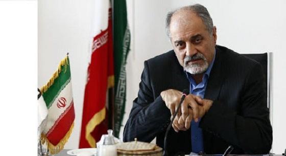 بهرام سبحانی رییس انجمن تولیدکنندگان فولاد ایران