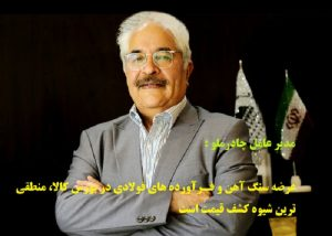 ناصر تقی زاده مدیر عامل شرکت معدنی و صنعتی چادرملو