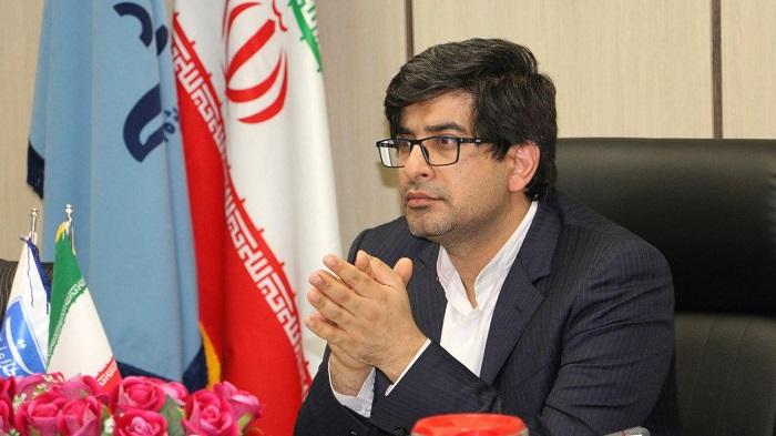 سعید زرندی ، معاون طرح و برنامه وزارت صنعت،معدن و تجارت