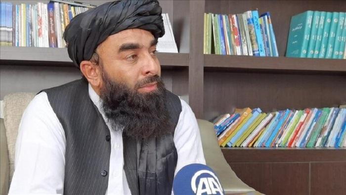 ذبیح الله مجاهد، از سخنگویان طالبان و معاون سرپرست وزارت اطلاعات و فرهنگ طالبان گفت که تعرفههای گمرکی و مالیات، یگانه منبع درآمد طالبان از زمانی است که قدرت را در افغانستان به دست گرفتهاند.